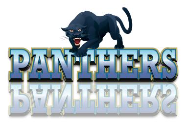 Panthers & cat